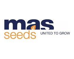 MAS Seeds