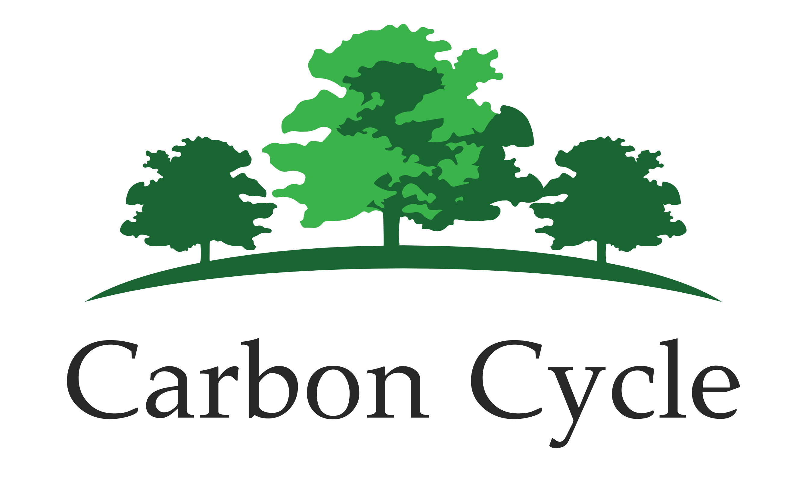 CARBON CYCLE GmbH & Co. KG